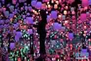 """走进日本""""无边界""""数字艺术博物馆"""