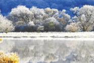 湖北神农架布局旅游全产业链:守好一方绿 迎来天下客