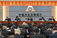 中国农业发展银行重庆市分行:争当金融服务乡村振兴的排头兵和主力军