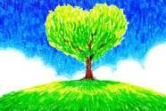 植树造林不能走形式