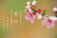 """""""竖蛋""""迎春、粘雀子嘴……春分习俗知多少?"""