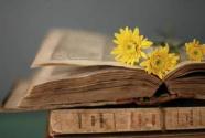 读书要与人生相伴,如影随形