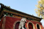 中国铁建硬核告白,用666架无人机为祖国打call  9月15日,一起见证太原史上最盛大的无人机演出