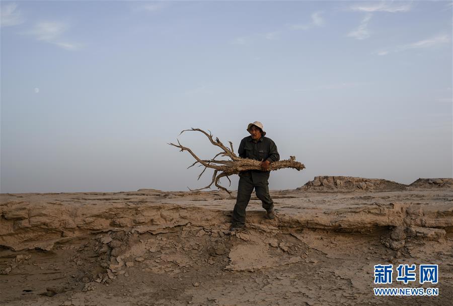 (图文互动)(1)大漠戈壁里的飞驰人生——新疆巴州文物局司机皮明忠的故事