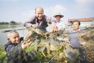 排列5安徽 宣城市宣州区水阳镇:帮扶村民 养蟹致富