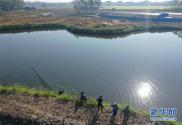 廣西玉林市福綿區:青山綠水助脫貧