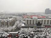 2020年第一場雪