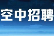 """今年春招季:全面线上""""空中招聘"""""""