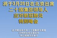 习近平将出席二十国集团领导人特别峰会