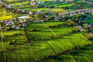 為生態留白 為未來儲綠