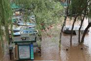 专家解析防洪热点问题:规模如何预判?损失怎么算?