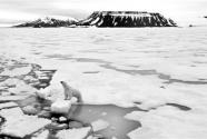 """30年升溫10℃ """"新北極""""正在形成"""