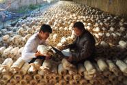 安徽庐江:电信扶贫 助力脱贫