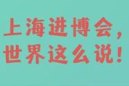 直通进博会 | 上海进博会,世界这么说!